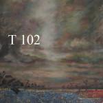 t 102