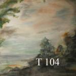 t 104